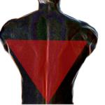 広背筋を鍛えて逆三角形体型に!自宅でもできる筋トレメニューを紹介