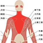 肩こり解消に効果的なストレッチ、ヨガ、筋トレ