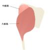 ヒップアップ(お尻の引き締め、ボリュームアップ)に効果的な筋トレ