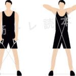 肩の筋肉『三角筋』が鍛えられるチューブを使った筋トレ