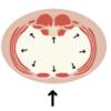 筋トレで使われる『パワーベルト』にはどんな意味があるのか。怪我の防止効果などについて。