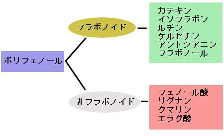 ポリフェノール、フラボノイドの分類