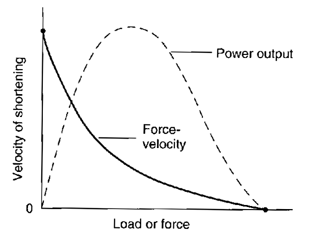 速度と力とパワーの関係