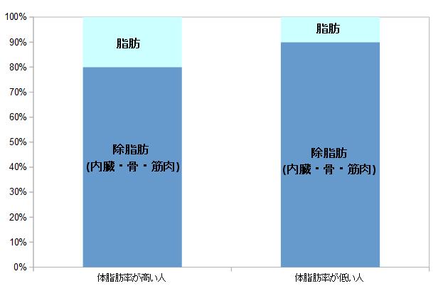 脂肪/除脂肪割合の違いイメージ