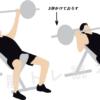 軽い負荷でも筋肥大に効果的?スロートレーニングが凄い。