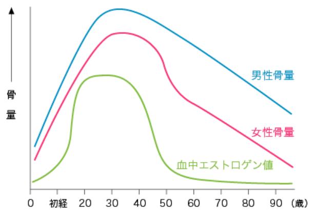 年齢による骨量の減少グラフ